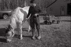 Wayne Kachmar and Brea, Bennington, Vt. Kachmar's well has tested as high as 760 parts per trillion for PFOA. Vermont's health advisory level is 20 ppt.