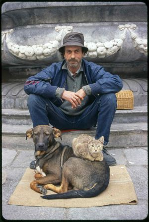 sicily-man-with-cat-and-dog-burned-in-scan.jpg